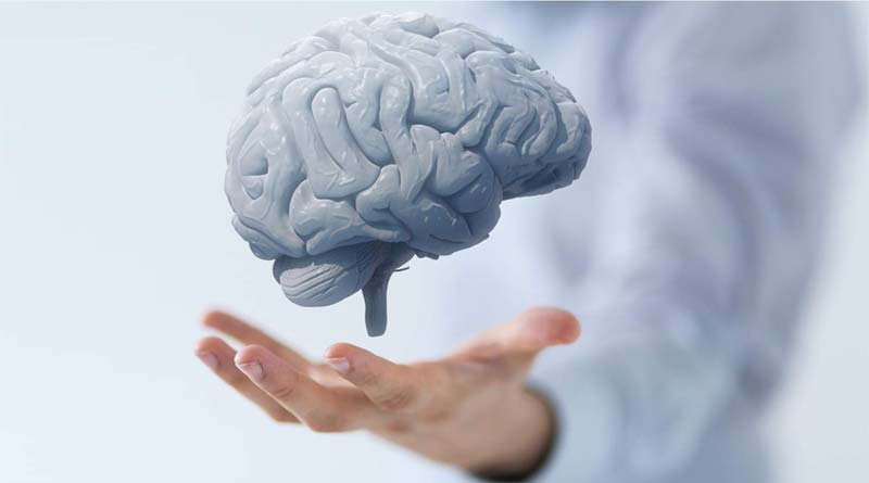 سلامت-مغز
