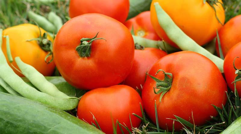 قد-سبزیجات