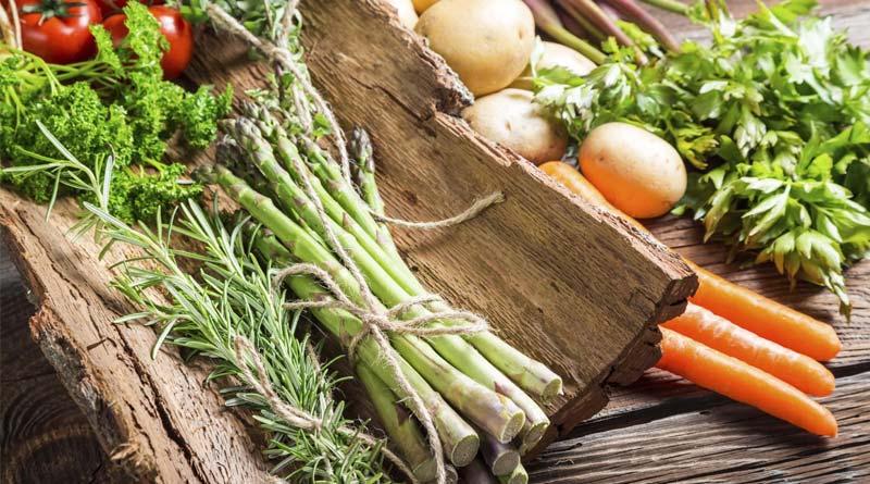 گیاهخواران-آهن