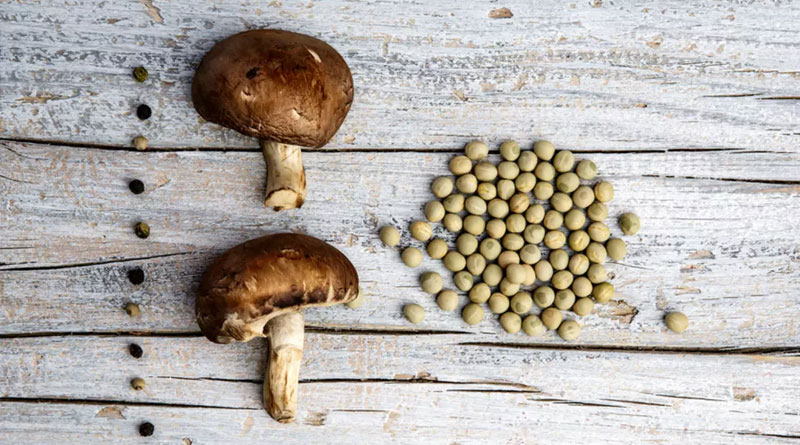 ۸-گیاه-پروتئینی-مصرف-روزانه