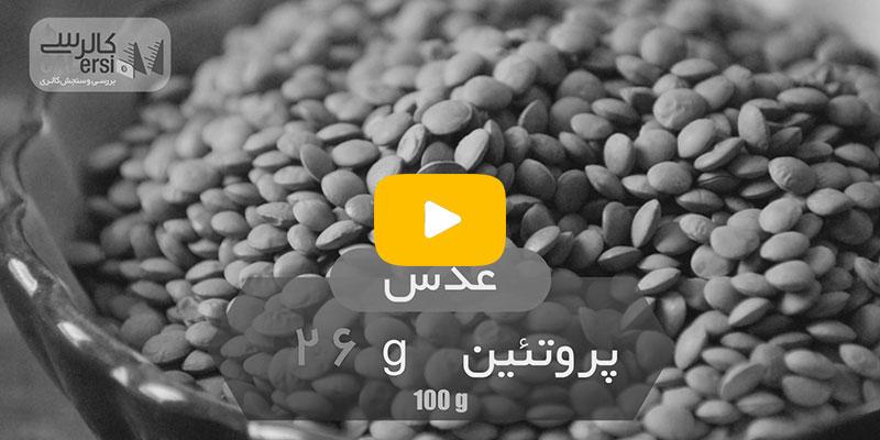 منابع-پروتئین-گیاهی-و-غیر-گیاهی