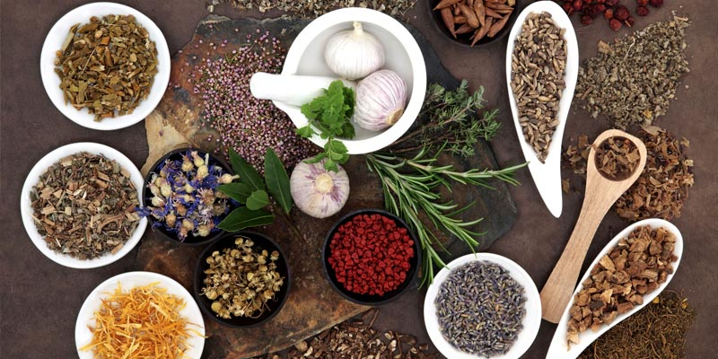 ۱۰-گیاه-مؤثر-در-کاهش-فشارخون