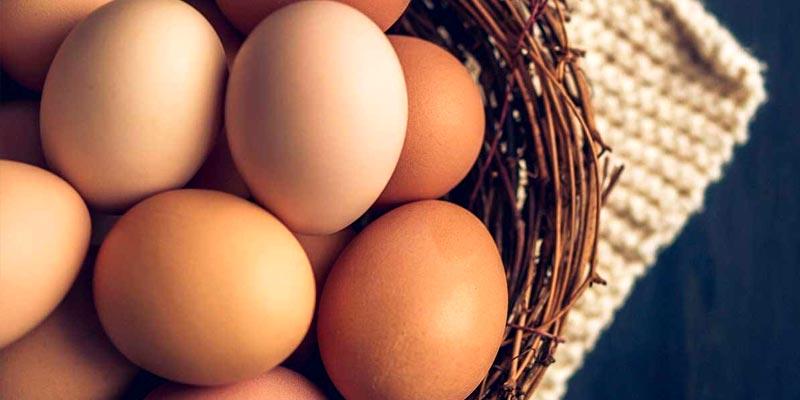 ۱۰-مورد-از-فواید-خوردن-تخم-مرغ-برای-سلامت-بدن